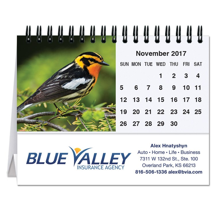 "5 13/16""x4 1/2"" Bird Watching Tent Desk Calendar"