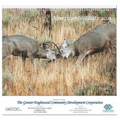 """American Wildlife Monthly Wall Calendar w/Coil Bound (10 5/8"""" x 18 1/4"""")"""