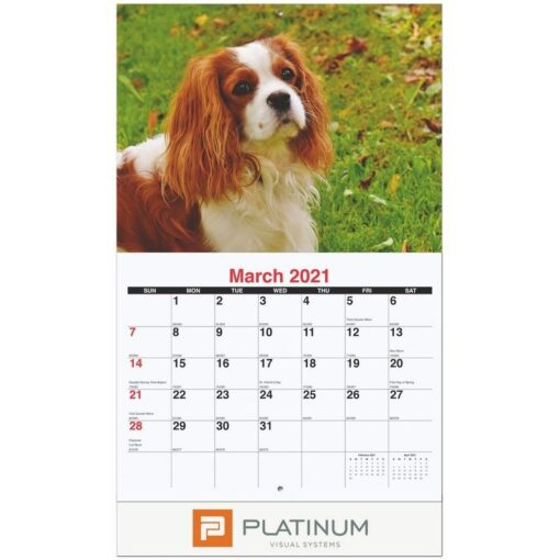 """Furever Friends Monthly Wall Calendar w/Staples (10 5/8"""" x 18 1/4"""")"""